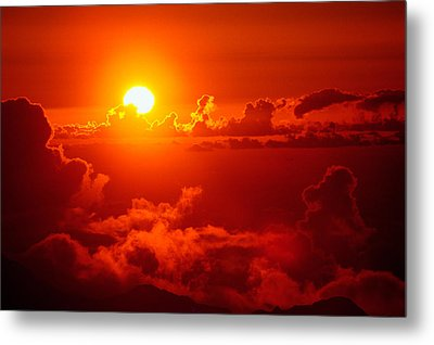 Metal Print featuring the photograph Morning Glory by Gary Cloud