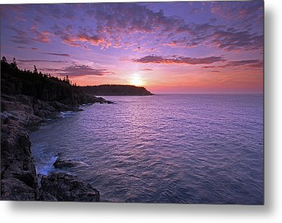 Metal Print featuring the photograph Morning Glory by Juergen Roth