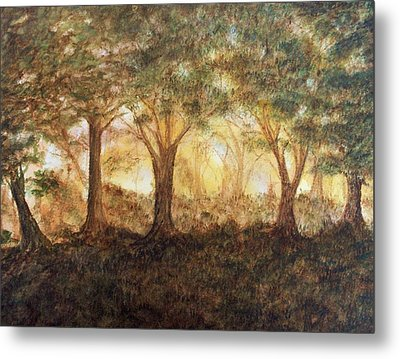 Morning Glow Metal Print by Jeanette Stewart