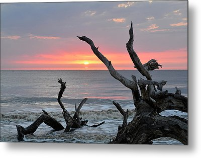 Morning Greeting Metal Print by Bruce Gourley