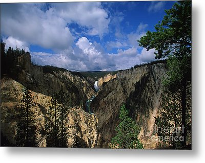 Morning In Yellowstone Metal Print by Stan and Anne Foster
