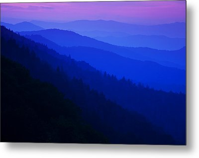Morning Light Metal Print by Andrew Soundarajan
