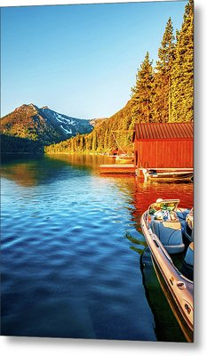 Morning Light Metal Print by Maria Coulson