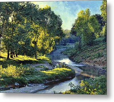 Morning Light On The Creek Metal Print by Bruce Morrison