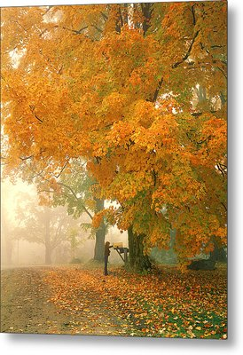 Morning Mail Cambridge Vermont Metal Print by George Robinson