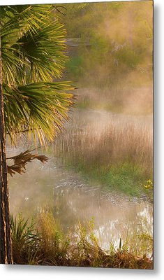Metal Print featuring the photograph Morning Mist by Margaret Palmer