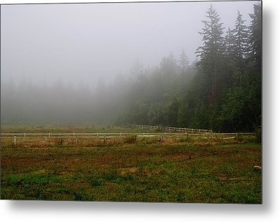 Metal Print featuring the photograph Morning Mist Solitude by Tikvah's Hope