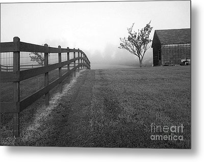 Morning On The Farm        Bw Metal Print