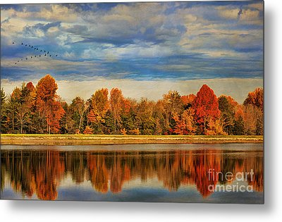 Morning Reflections Metal Print by Darren Fisher