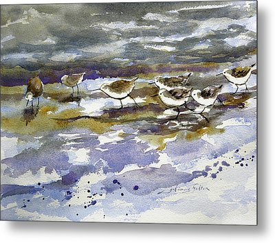 Morning Sandpipers At The Beach Metal Print