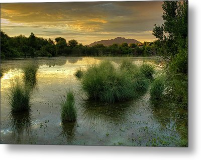 Morning Serenity Metal Print