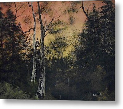 Morning Metal Print by Shawn Cooper