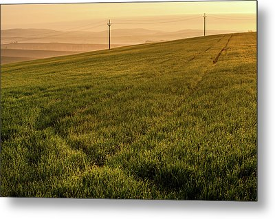 Metal Print featuring the photograph Morning Sun. Moravian Tuscany by Jenny Rainbow