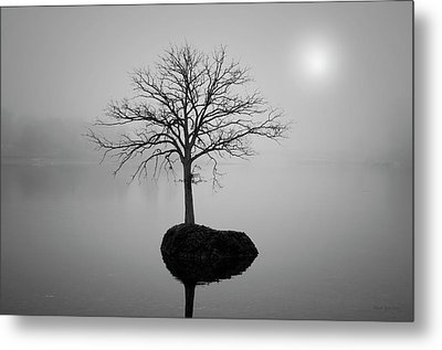 Morning Tranquility Metal Print by Dave Gordon