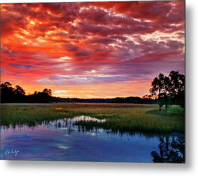 Morning View Metal Print by Phill Doherty