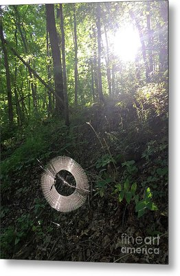 Web Weaving In The Early Morning Forest Metal Print