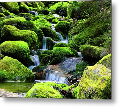 Moss Rocks And River Metal Print by Raymond Salani III