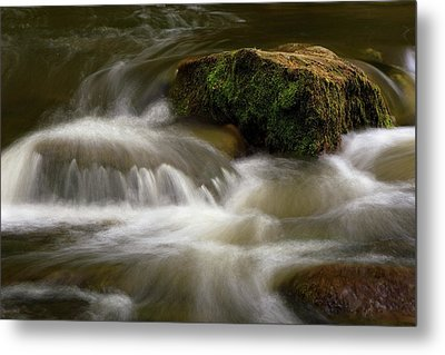 Mossy Foam Metal Print by Timothy McIntyre