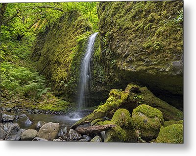 Mossy Grotto Falls In Summer Metal Print by David Gn
