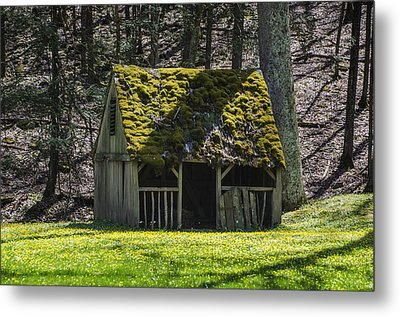 Mossy Manger In Spring Metal Print by Bill Cannon