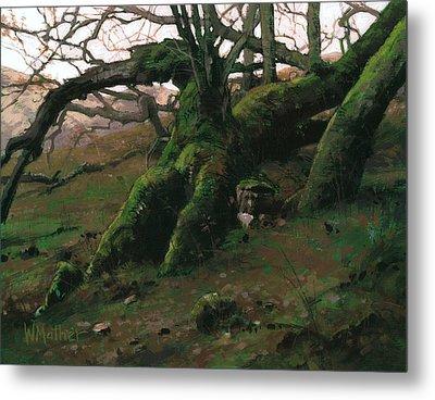 Mossy Oak Metal Print by Bill Mather