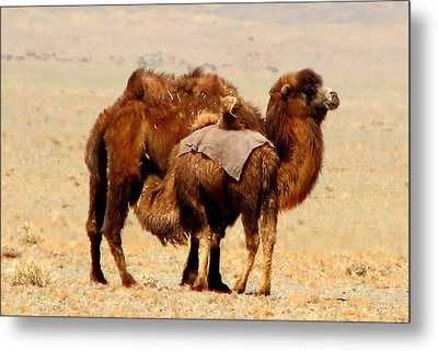 Mother And Child Metal Print by Diane Height