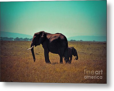Metal Print featuring the photograph Mother And Child by Karen Lewis