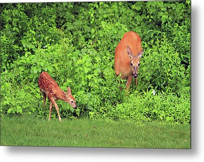 Mother And Child Metal Print by Karol Livote