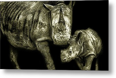 Mother And Child Metal Print by Martin Newman