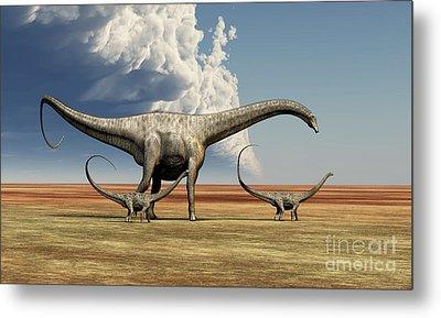 Mother Diplodocus Dinosaur Walks Metal Print by Corey Ford