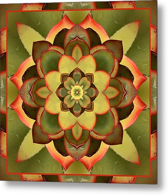 Mother Lotus Metal Print by Bell And Todd