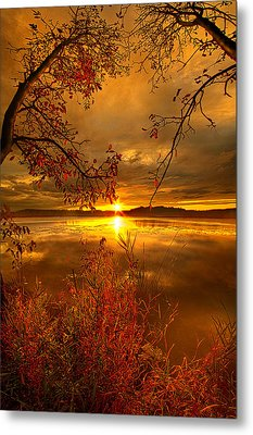 Mother Nature's Son Metal Print by Phil Koch