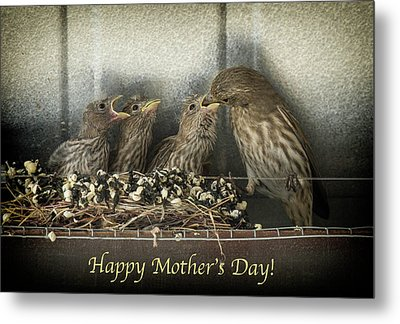 Metal Print featuring the photograph Mother's Day Greetings by Alan Toepfer