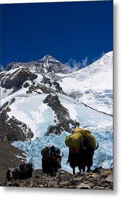 Mount Everest Metal Print by Gaurav Agrawal