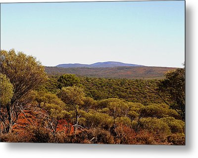 Mount Gibson Station To Mt Singleton Metal Print