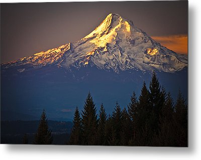 Mount Hood From The North Metal Print by Ed Book
