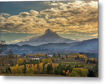 Mount Hood Over Farmland In Hood River In Fall Metal Print
