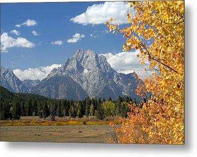 Mount Moran In Autumn Metal Print by Larry Ricker