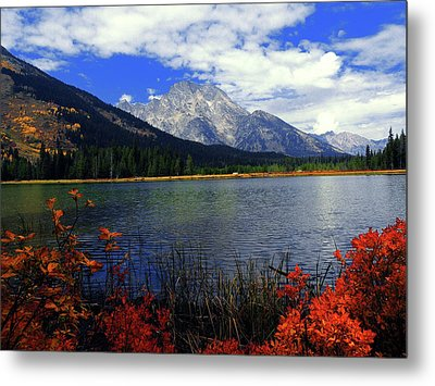 Mount Moran In The Fall Metal Print