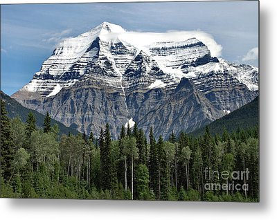 Mount Robson British Columbia Metal Print by Elaine Manley
