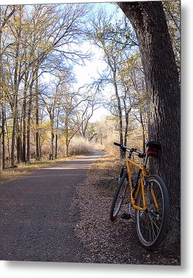 Mountain Bike Trail Metal Print
