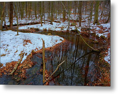 Mountain Creek Along At Metal Print by Raymond Salani III