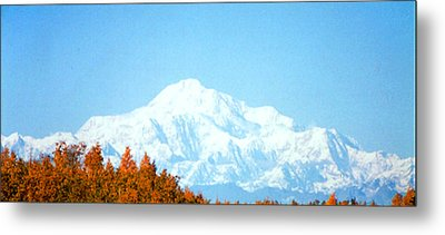 Mountain Metal Print by Judyann Matthews