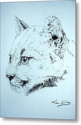 Mountain Lion Metal Print by Ken Day