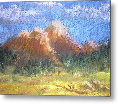 Mountain Meadow 2 Metal Print by Curt Peifley