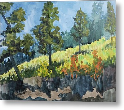 Mountain Meadow Metal Print by Bethany Lee