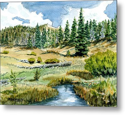 Mountain Meadow Metal Print by Don Bosley