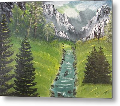 Mountain Meadow Metal Print by Thomas Janos