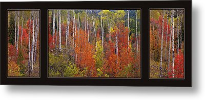 Mountain Of Color Metal Print by Leland D Howard