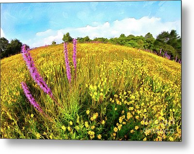 Metal Print featuring the painting Mountain Of Summer Flowers In The Blue Ridge Ap by Dan Carmichael